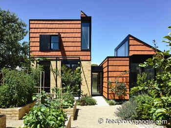 Terracotta House / Austin Maynard Architects