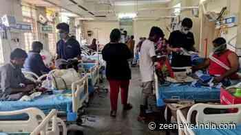 Patient bitten on face by rat at BMC-run hospital in Mumbai, Mayor orders probe