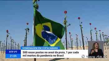 Brasil. 500 rosas no areal em homenagem a meio milhão de vítimas da pandemia - RTP