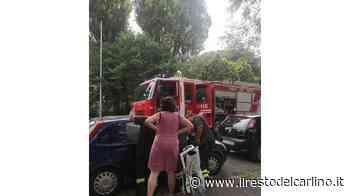 Senigallia, doppio incendio: arrivano i pompieri. Figlio bloccato in auto - il Resto del Carlino