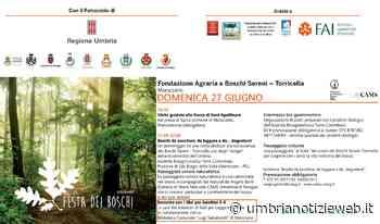 Domenica 27 giugno fa tappa a Marsciano la Festa dei Boschi 2021 - Umbria Notizie Web