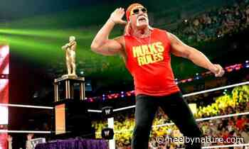 Hulk Hogan On Returning To WWE, 'Some Of The Younger Guys Are Really Cold To Me' • - Heel By Nature