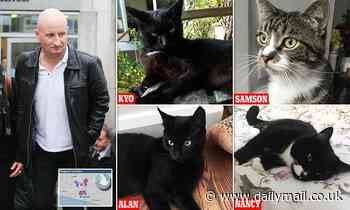 Security guard, 54, 'knifed seven cats - killing two - during month-long stabbing spree'