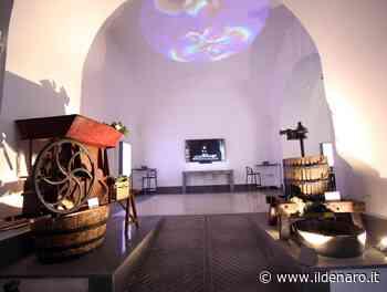 Il nuovo progetto Alkvé venerdì al Mavv Wine Art Museum di Portici. Di scena le alchimie vesuviane - Ildenaro.it - Il Denaro