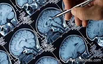 Study finds loss in grey matter after coronavirus infection - The Hindu