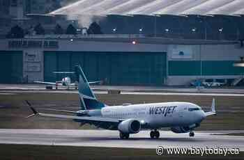 WestJet plans cargo service with dedicated aircraft starting next year