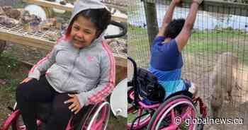 London Ont. girls stolen wheelchair returned 'completely destroyed' family says