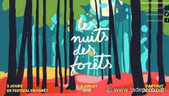 Tarbes. Le Musée de l'invisible prépare les Nuits des forêts - LaDepeche.fr