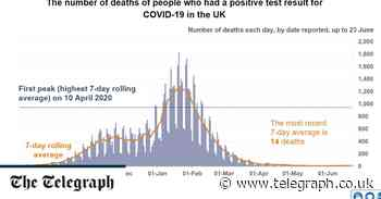 Coronavirus latest news: Deaths so low 'you can't see increase on graph', vaccine chief tells No 10 briefing - Telegraph.co.uk