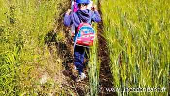Verzeille : des écoliers en chemin vers les JO 2024 avec l'Usep 11 - L'Indépendant