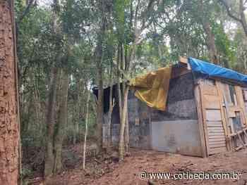 PM flagra desmatamento em área de proteção ambiental em Embu das Artes - Cotia e Cia