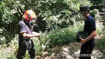 Esplosione Cesena: un morto a Roncofreddo - il Resto del Carlino