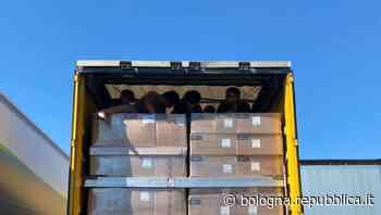 Bentivoglio, otto migranti afgani nascosti in un camion: quattro minorenni e un bambino - La Repubblica