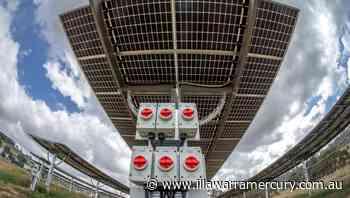 Renewable energy set to become Wollongong City Council's staple - Illawarra Mercury