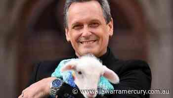 MP brings newborn lamb to Vic parliament - Illawarra Mercury