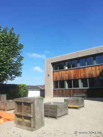 Kunstenares Linde Hermans bouwt Zomertuin met buurtbewoners (Houthalen-Helchteren) - Het Belang van Limburg Mobile - Het Belang van Limburg