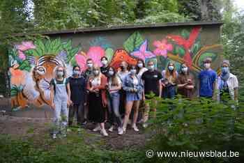 Graffitikunstenaars pimpen elektriciteitskast met tekeningen (Deinze) - Het Nieuwsblad