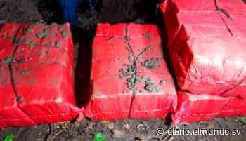 Localizan alrededor de 200 kilos de cocaína en Tecoluca, San Vicente La droga está valorada en más de $5 millones, informó la PNC. - Diario El Mundo