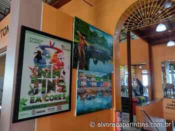 Coletivo Parintins em Cores realiza 6ª edição do Salão de Arte - Alvorada Parintins