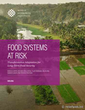 Food Systems at Risk: Transformative Adaptation for Long-Term Food Security - World - ReliefWeb