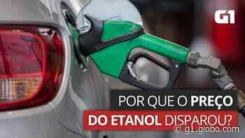 Preço médio do etanol sobe para R$ 4,82 em Porto Velho após alta de quase 6% em um mês, diz ANP - G1