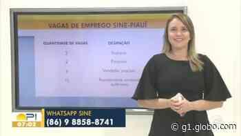 Sine disponibiliza mais de 40 vagas de emprego em Teresina; veja oportunidades - G1