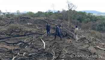 Intervienen una propiedad por tala y quema de árboles nativos en Ybycuí - Radio Ñanduti