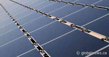 Southern Alberta firm signs massive solar power deal with tech giant Amazon