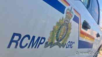 Sask. RCMP say arrests made after shots fired at 2 people and home in RM of Shellbrook