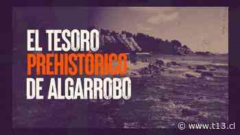 [VIDEO] Reportajes T13: El tesoro prehistórico de Algarrobo - Teletrece
