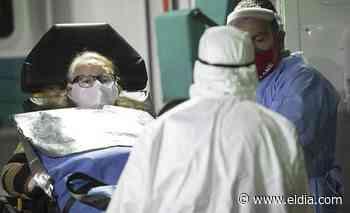 Argentina registró 706 muertos por coronavirus en las últimas 24 horas - Diario El Dia