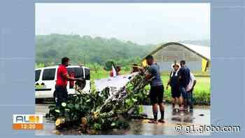 Indígenas fecham de novo trecho da BR-101 em Joaquim Gomes, AL - G1
