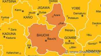 '37 killed' as Cholera spreads to 15 LGAs in Bauchi - TheCable