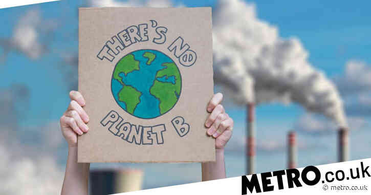 Damning climate change reports say UK isn't doing enough