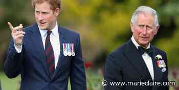 Prince Charles Is Leaving London When Prince Harry Visits Next Week - MarieClaire.com