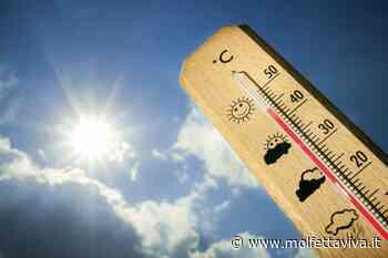 Ondata di calore su Molfetta e nel resto della Puglia: venerdì temperature fino a 36° - MolfettaViva
