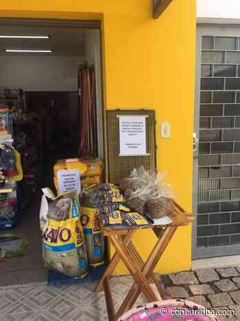 Curitibanos multiplicam ações de solidariedade na pandemia - CBN Curitiba 90.1 FM
