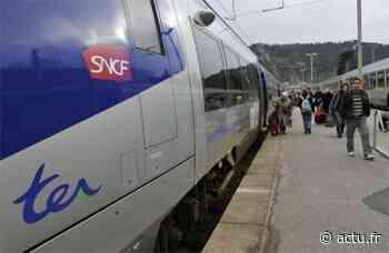 Incendie sur les voies SNCF entre Narbonne et Béziers : la circulation a repris dans les deux sens - actu.fr