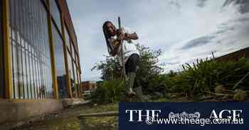 'Open space with weeds' becomes community garden for refugees