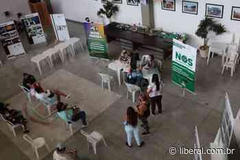O Liberal Nova Odessa entrega 91% dos cartões do auxílio emergencial municipal - O Liberal