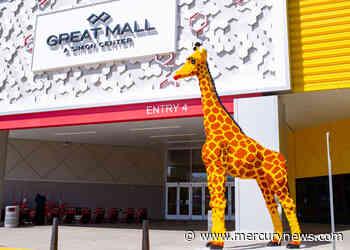 San Francisco Zoo giraffe helps pick name for towering Lego replica - The Mercury News