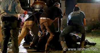 Escaped cows roam Pico Rivera; 1 killed by deputy - Los Angeles Times