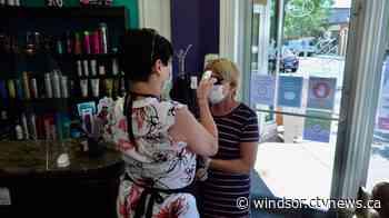 Windsor-Essex medical officer of health believes region is ready for Step 2 of reopening - CTV News Windsor