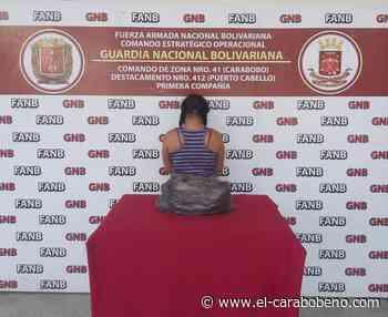Detenida mujer en Puerto Cabello por cultivar marihuana en su vivienda - El Carabobeño
