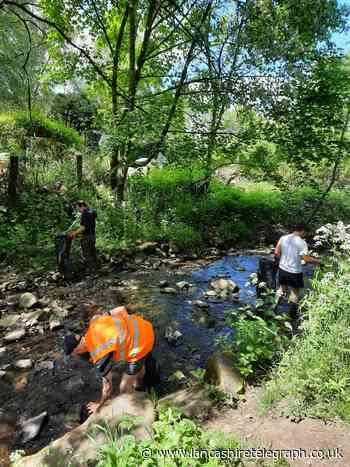 Volunteers clear Tinker Brook in Oswaldtwistle during spring clean