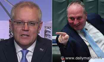 Morrison opens up about Barnaby Joyce after Karl Stefanovic described him as a pebble in a boot