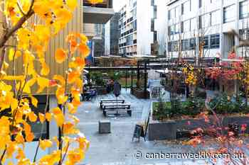 Kingsborough Village: a community by design - Canberra Weekly