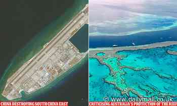 China says Great Barrier Reef is 'in danger' while smashing its own coral