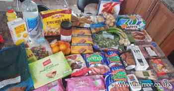 Clever mum-of-four spends £10 on weekly shop and gets almost £100-worth of food