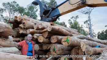 Bob Brown loses High Court bid on logging - Blue Mountains Gazette
